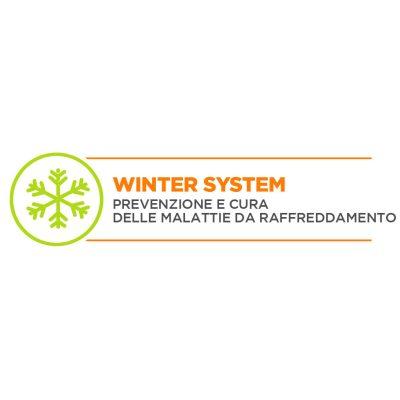 WINTERSYSTEM