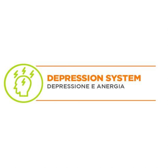 depressionsysyem