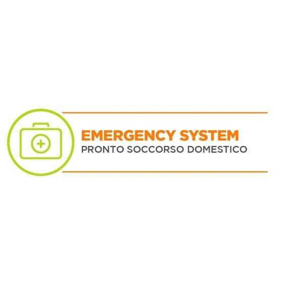 emergencysystem3